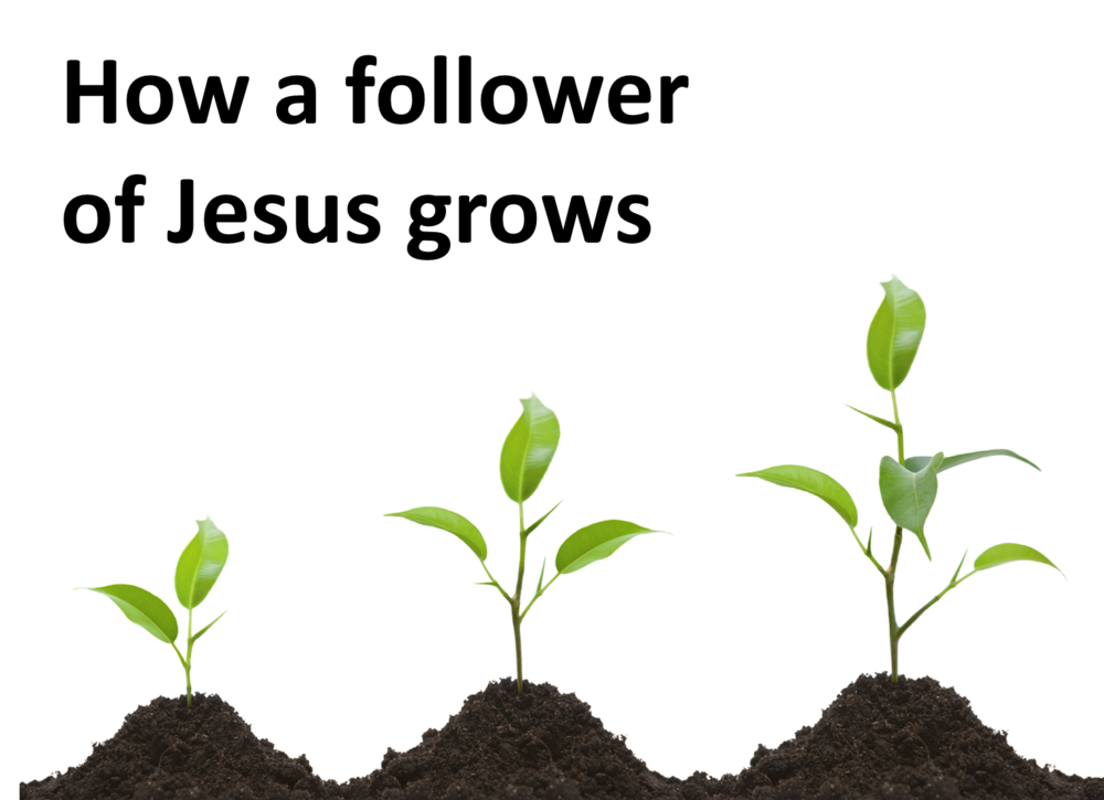 How a follower of Jesus grows series slide 20Oct13.png