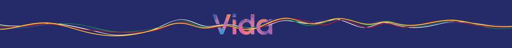 PPT_Slide_Vida-04.jpg