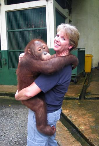 Orangutan Rescue Center in Jakarta Zoo