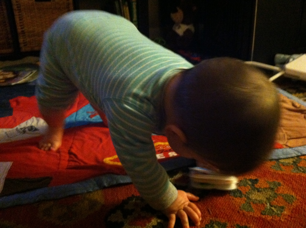 downward facing dog 3-2-14.jpeg
