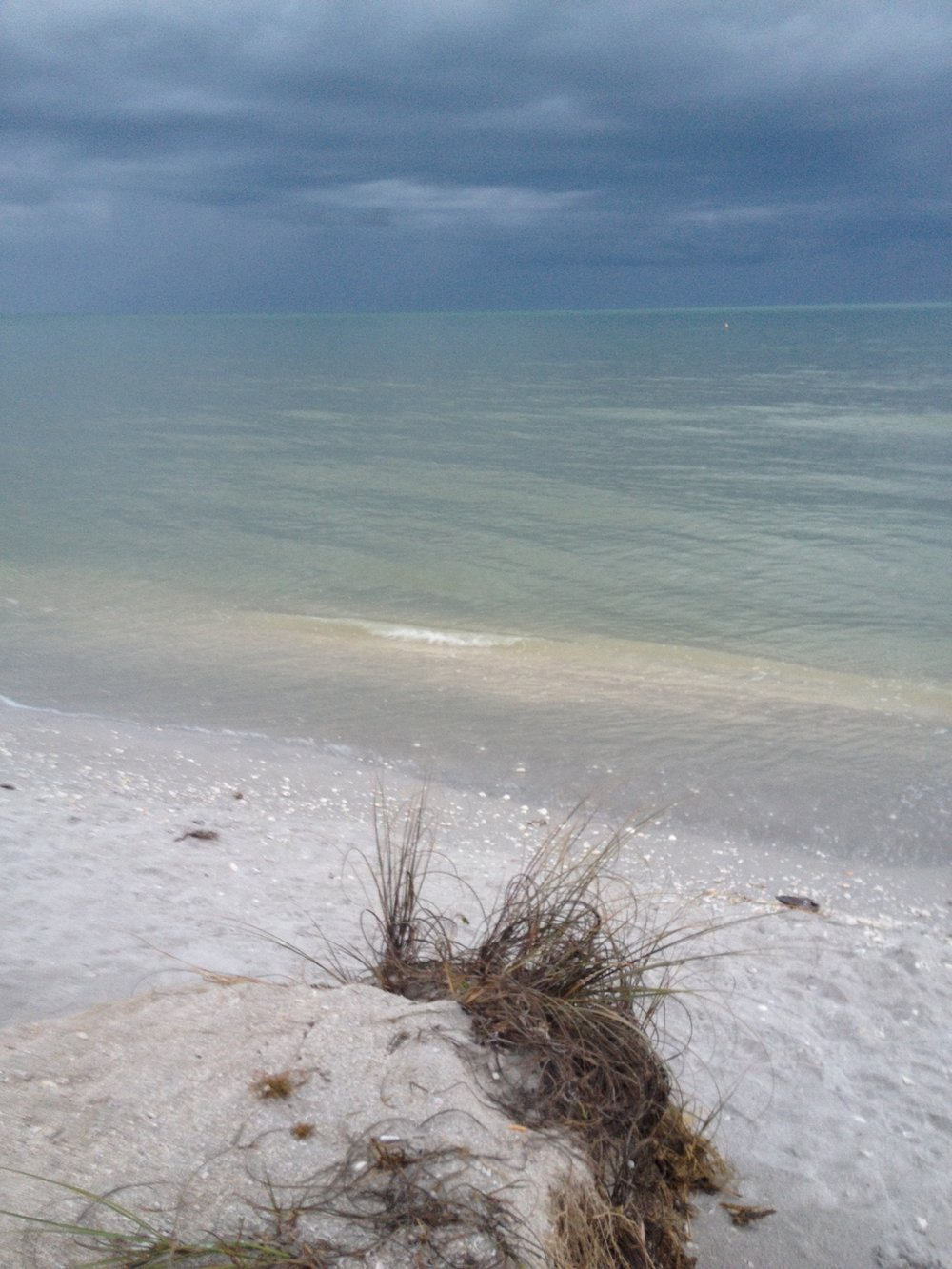 Sanibel sand and surf! My view as I sit typing. No, I am not on the beach...really.