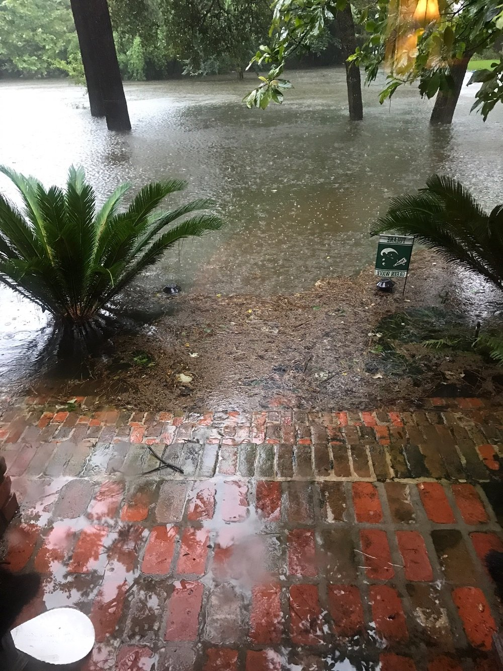 Our Friend's mid-town Houston patio, garden and pool, Aug.27, when the rains came.