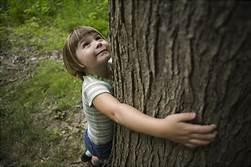 hug a tree.jpg