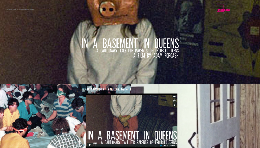 http://www.inabasementinqueens.com