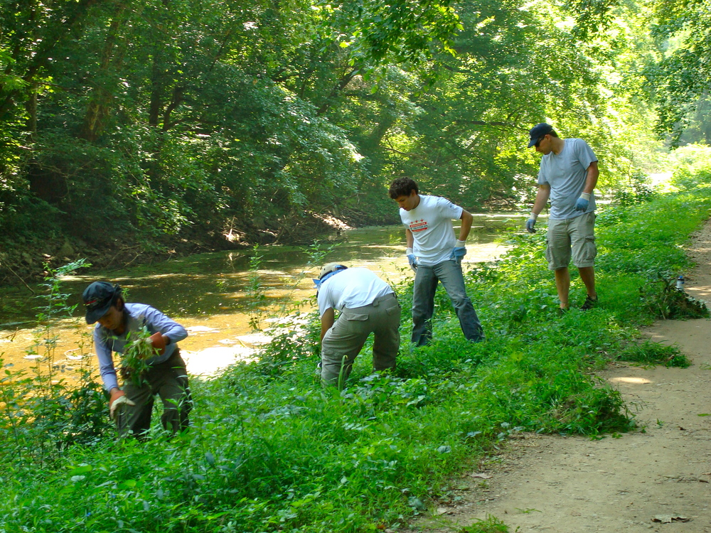 2011.07.10 Canal Stewards Cleanup (3).JPG