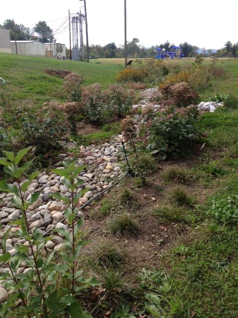 fall 2012 garden 3.JPG