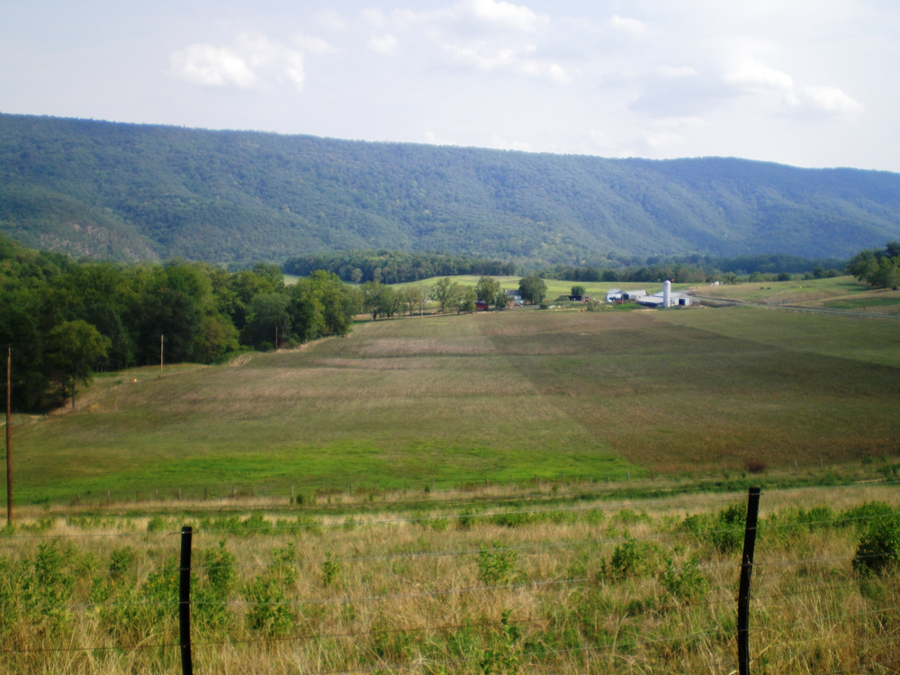 Vance_farm.JPG