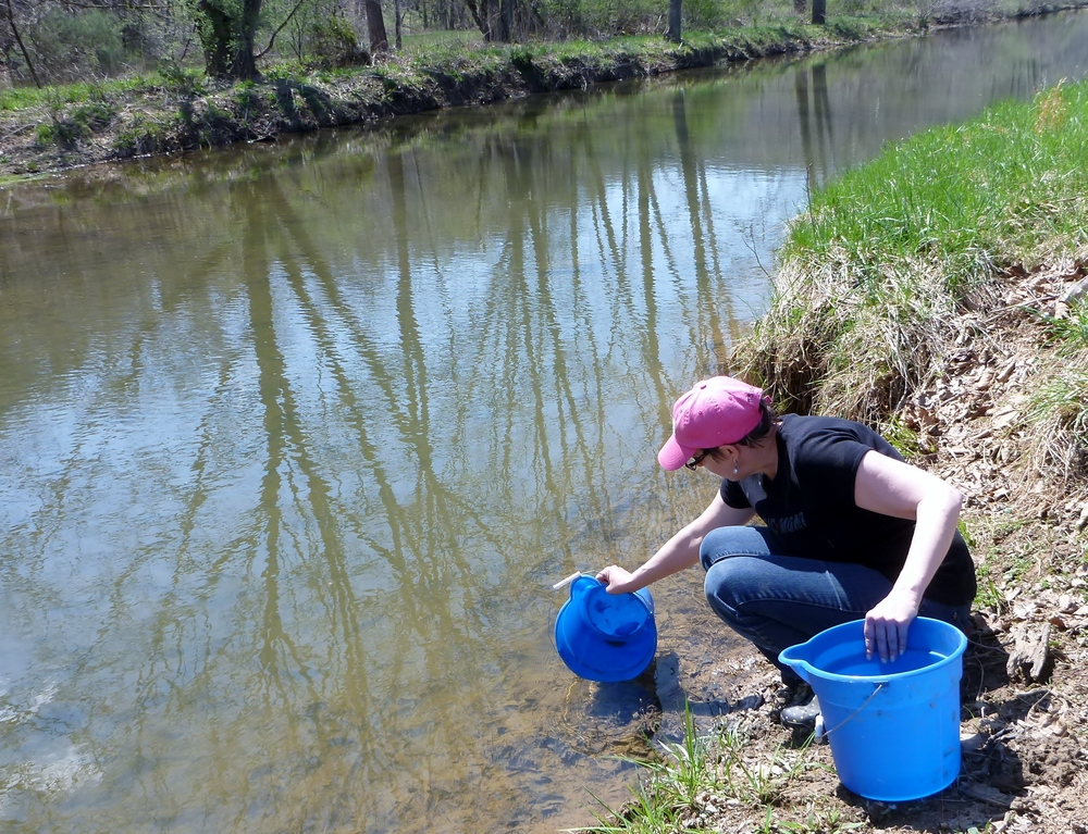 TracY, A FREDERICK COUNTY RESIDENT, getting water from hogue creek to waterthe newly planted trees and shrubs.