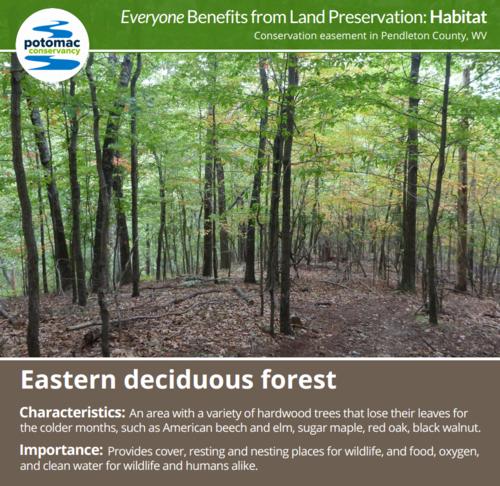 Everyone Benefits From Land Preservation  Potomac Conservancy Habitatpng