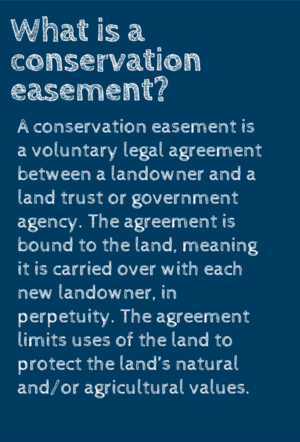 Everyone Benefits From Land Preservation Potomac Conservancy