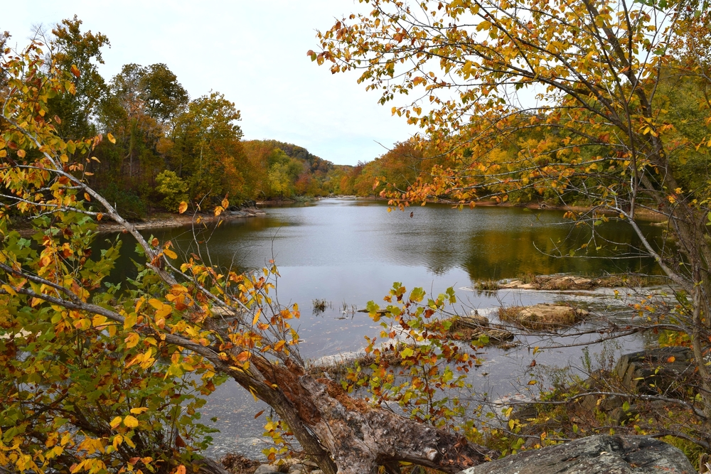Fall along the Potomac River.
