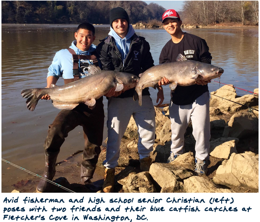 potomac river blue catfish