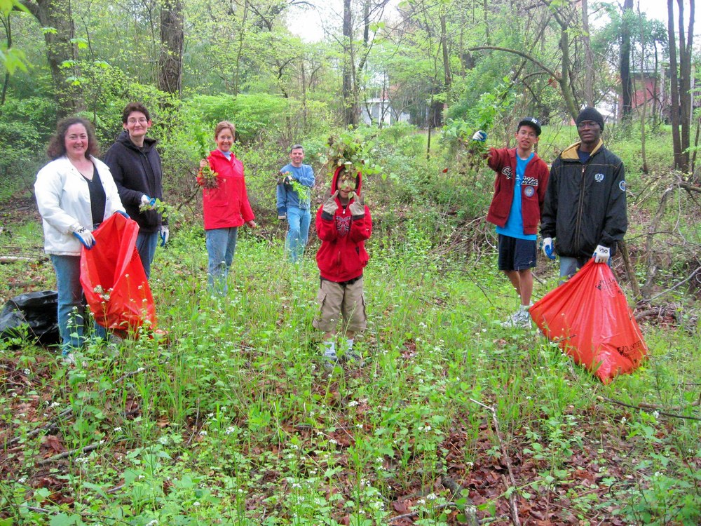 sligo creek invasive plants