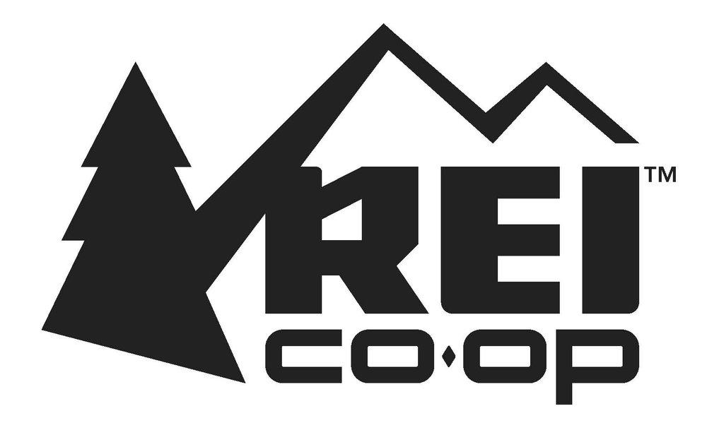 REI logo updated 2016.jpg