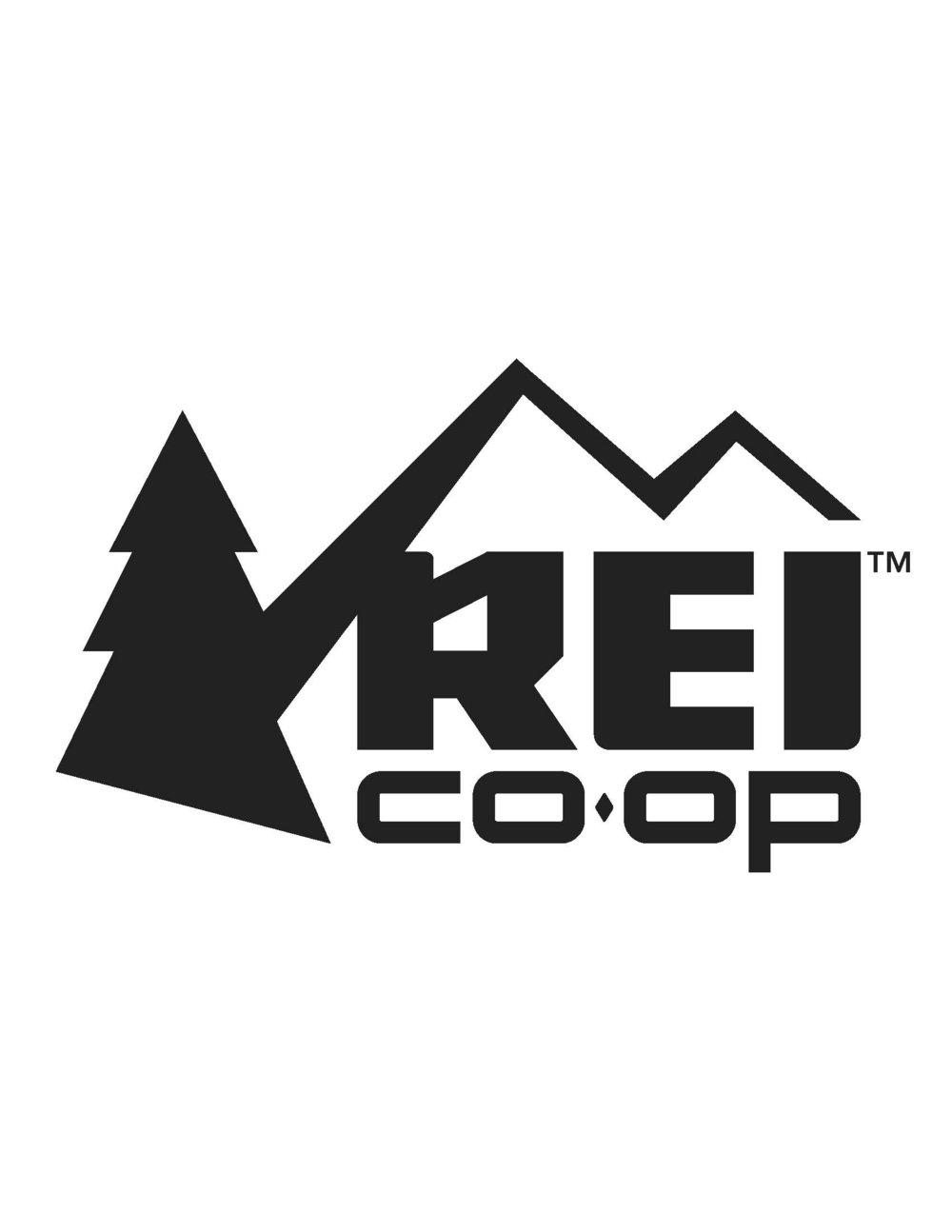 REI logo small Updated May 2017.jpg