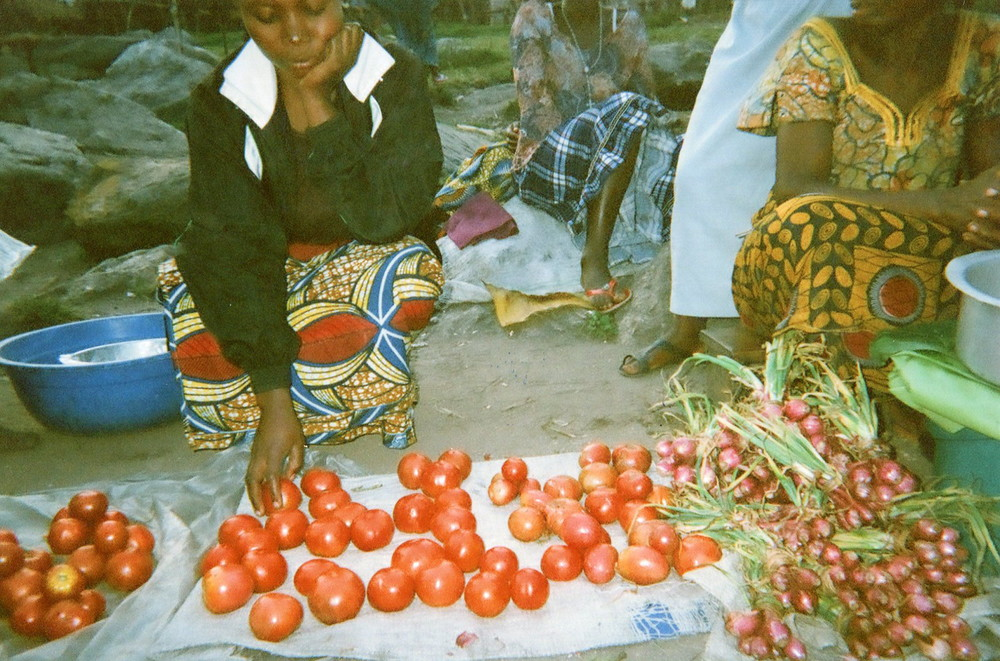 Here I am out of the forest and I am selling tomatoes.