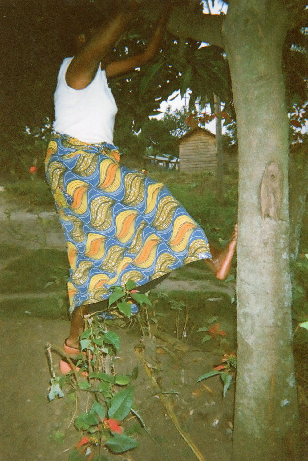 I jumped on a tree to cut mangoes because I was very hungry. When they saw me I was beaten to death.