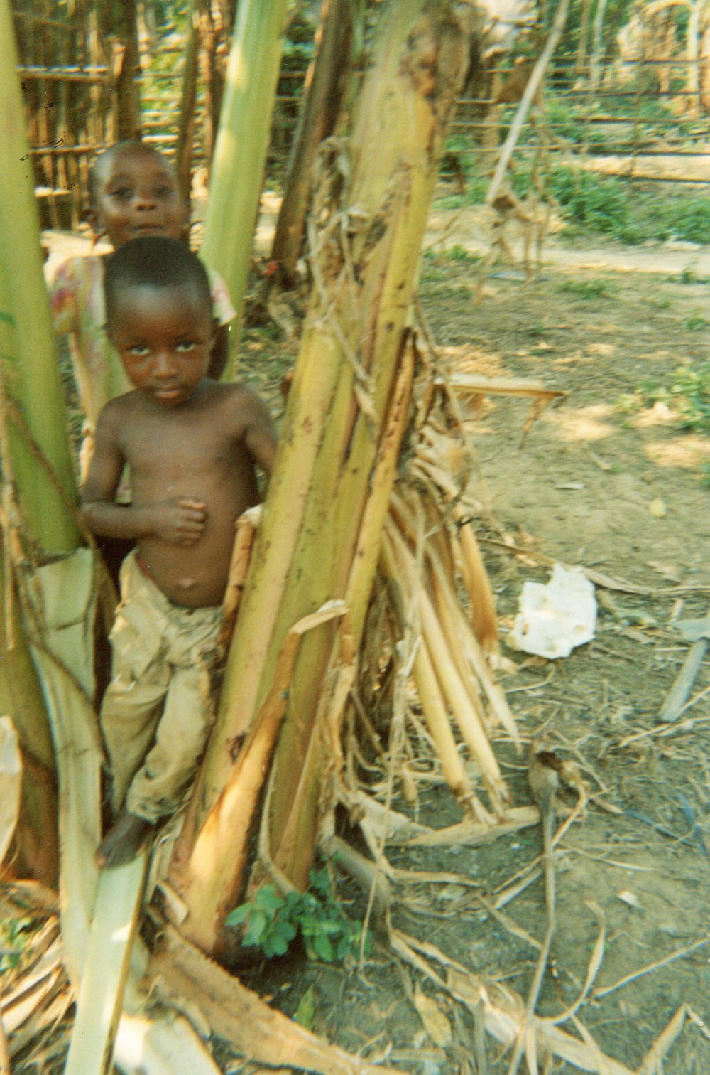The difficulty that kids have is to not have food and this is why they go in the forest to look for food.