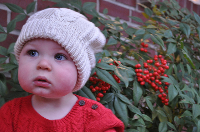 And then I got this shot. This was pretty much the shot, minus the happy the face. As his mother, I adore this shot. He cheeks, the red sweater and red hollies, the hat! But I didn't use it on the Christmas card. While I love it, I didn't want people to think he was sad about the holidays. So we tried some more.