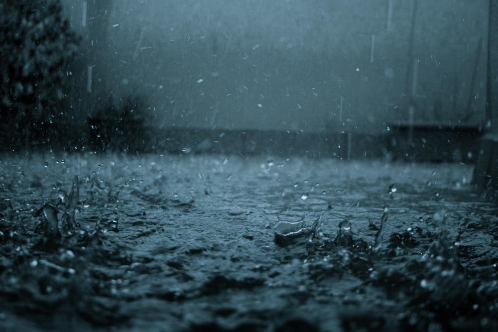 Rain world 1.jpg