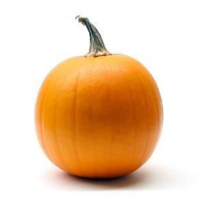 pumpkin-1511141.jpg
