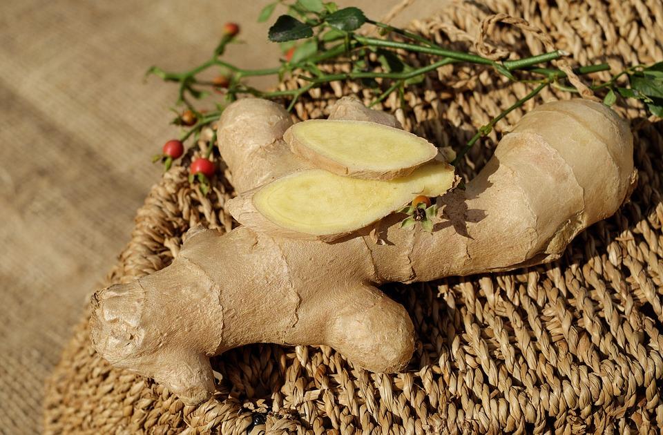 ginger-1738098_960_720.jpg