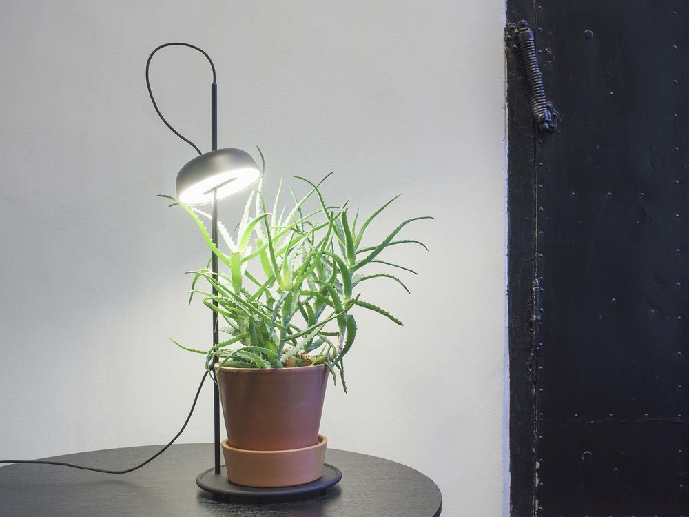 Ki Light by Hallgeir Homstvedt for Elementa - with cast iron base to place a flower pot or any other stuff you might have on your table.  Photo: Svein Gunnar Kjøde
