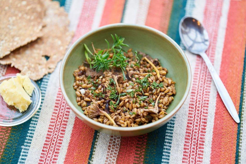 Warm spelt-salad with kale, mushrooms and apple. Photo: Alexander Benjaminsen