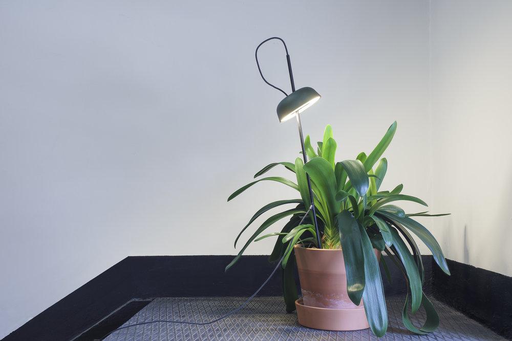 Ki Light planter base_1500 .jpg
