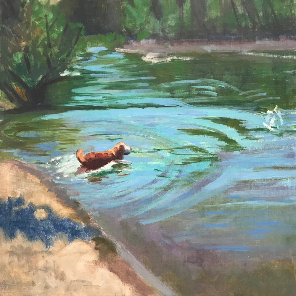 Red Dog, Green River, 10x10 oil on panel by Holli Harmon