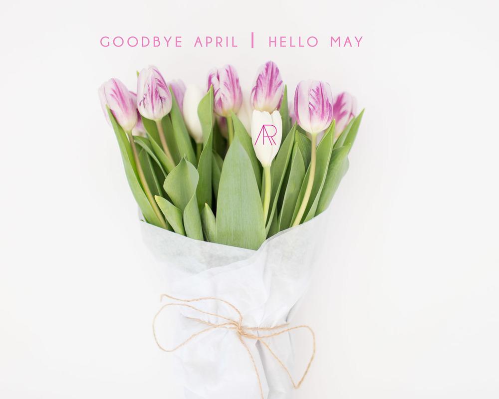Hello May Alyssa Rosenheck Photography