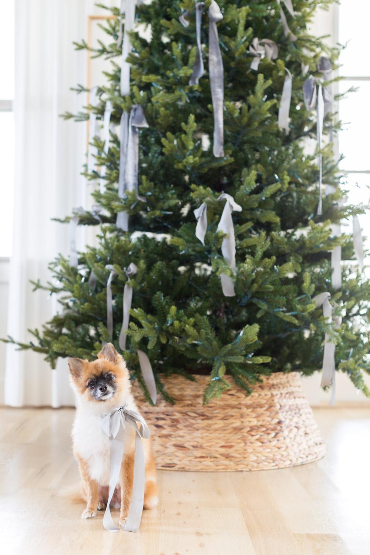 Alyssa Rosenheck's The New Southern Making the Holidays Your Own. Christmas Tree Decorations, Holiday Decor, 2018, Nashville, TN ©AlyssaRosenheck