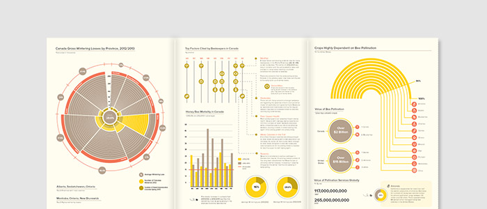 VITALITY OF HONEY BEES — information design, illustration, print