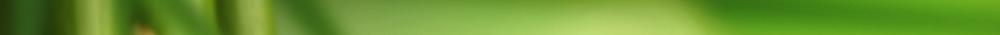Green strip_thin.png