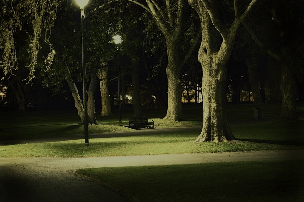 park_at_night1_sm1.jpg