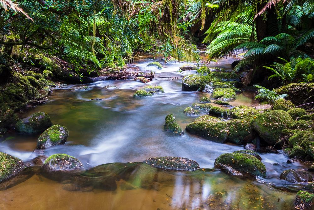 Tasmania_x-1.jpg