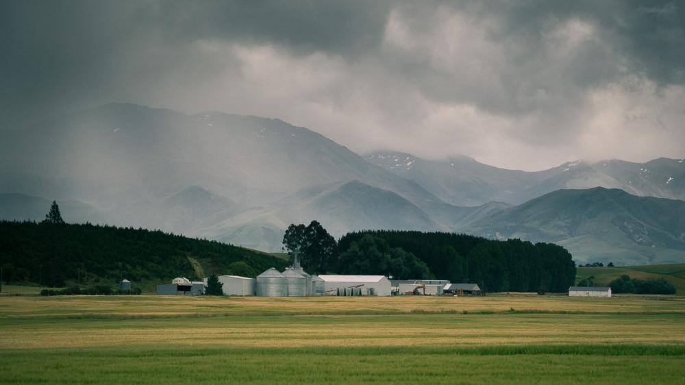 Southisland-2.jpg