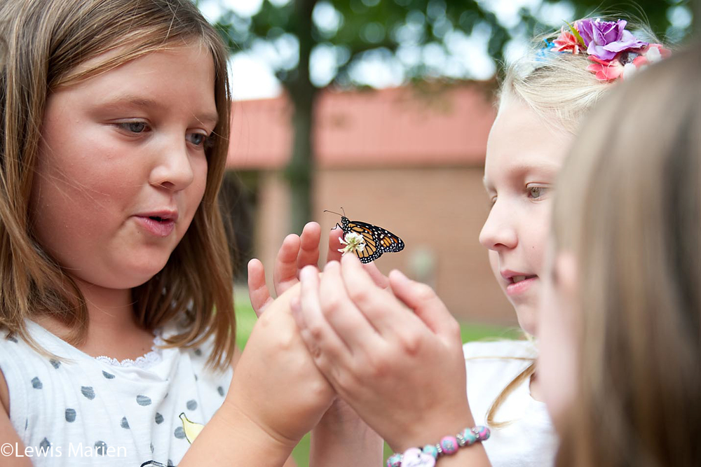 Josie Parish, 9, left, and Bailey Ripka, 9, interact with a monarch butterfly near Gale Elementary School in Galesburg, Ill., on Sept. 8.