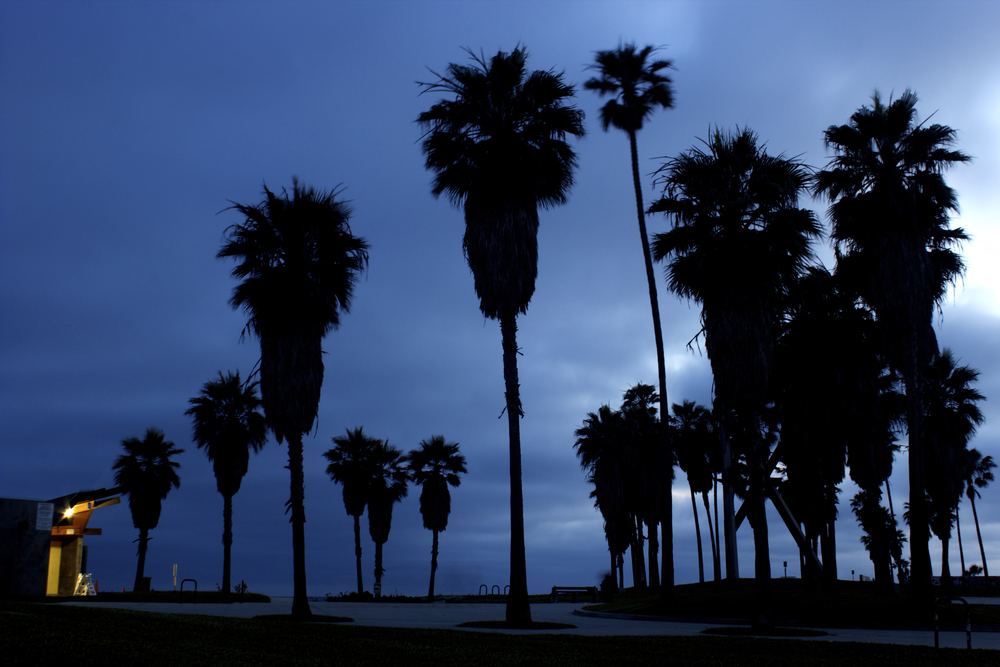 Venice Beach Rollie Robles.jpg