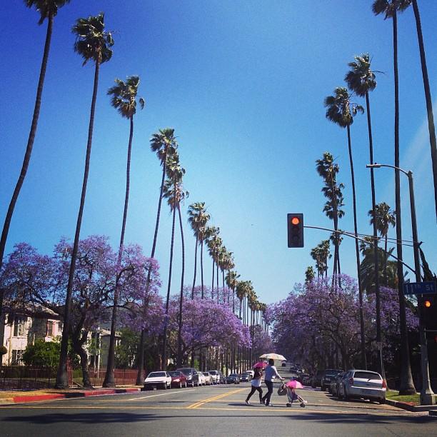 I live in LA.