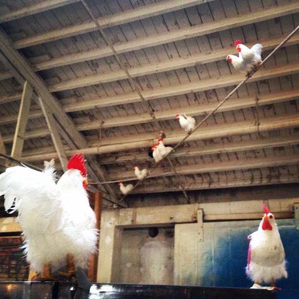 Chicken. Los Angeles, CA