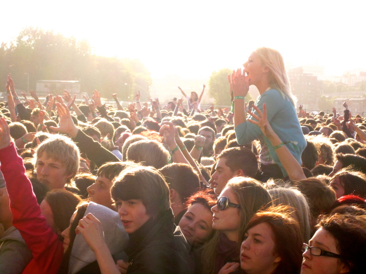 Crowd at Evolution Festival.