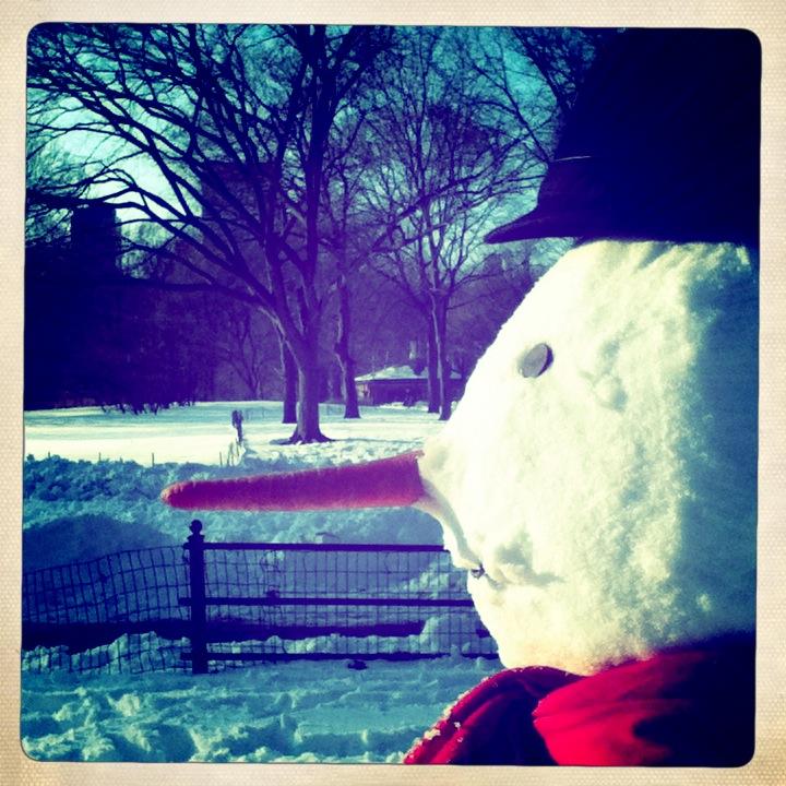 Woodrow. Central Park, NY