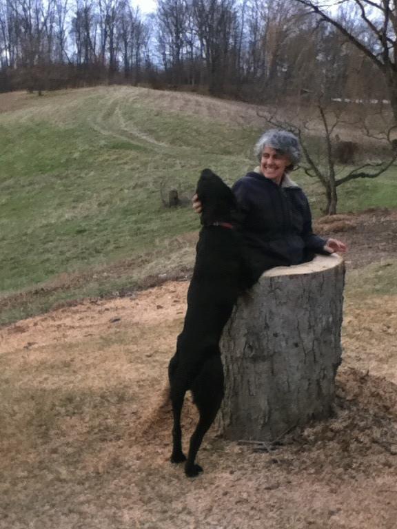 Sam, and my mom (inside a stump). Rhinebeck, NY