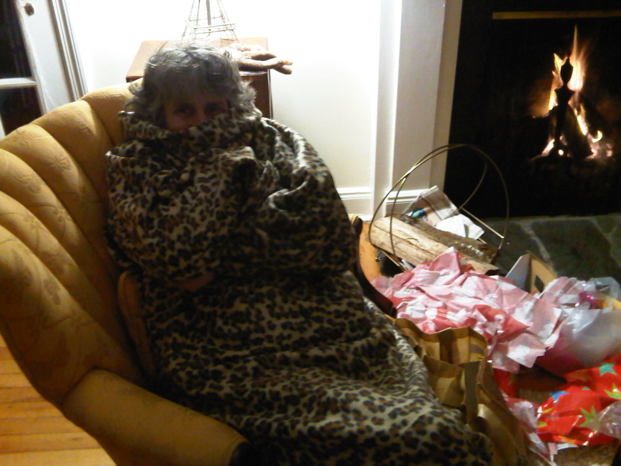 A very Snuggie Christmas.