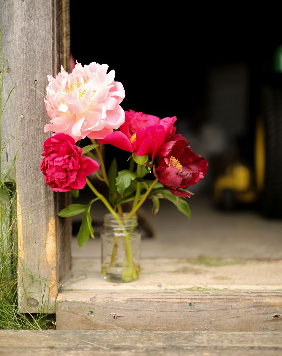 The Local Bouquet Peony Class (66 of 157).jpg