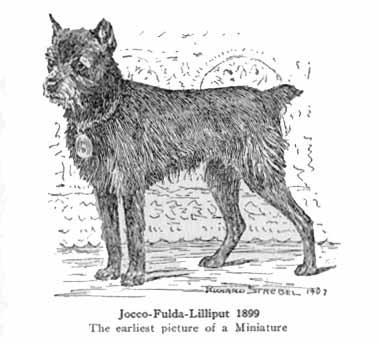 Jocco_1899.jpg