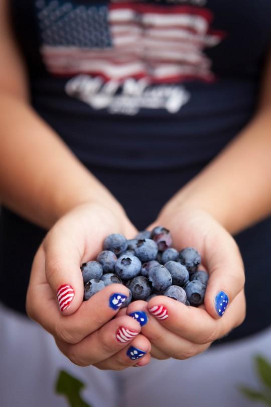 Blueberry-CSA-7-2014-Post-08-e1404399694817.jpg