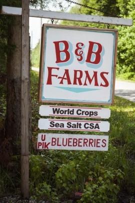 Blueberry-CSA-7-2014-Post-add-03-e1404400258654.jpg