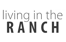 Dianna Rae Jewelry Featured in Living in the Ranch - Sponsor Spotlight